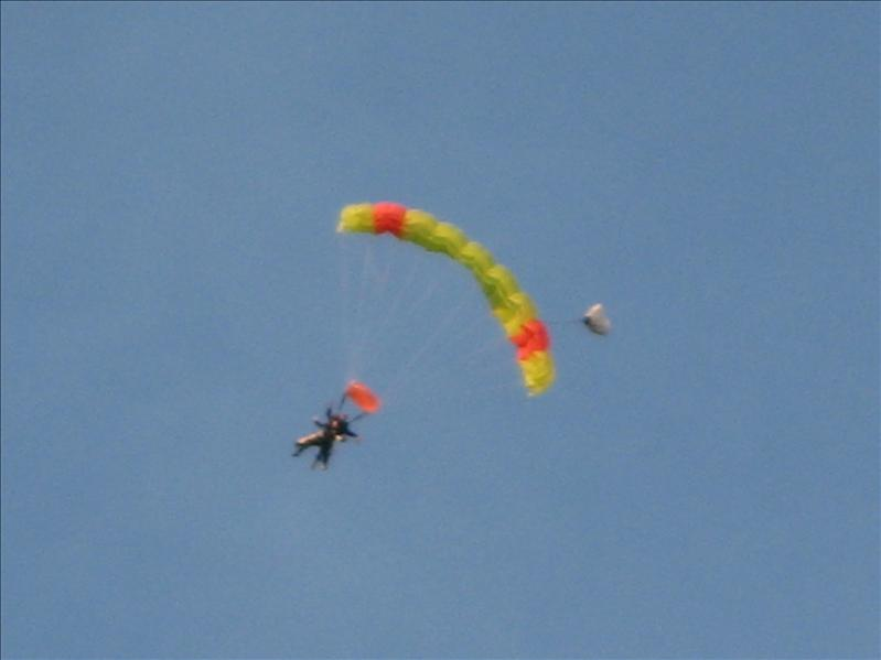 Laura skydive
