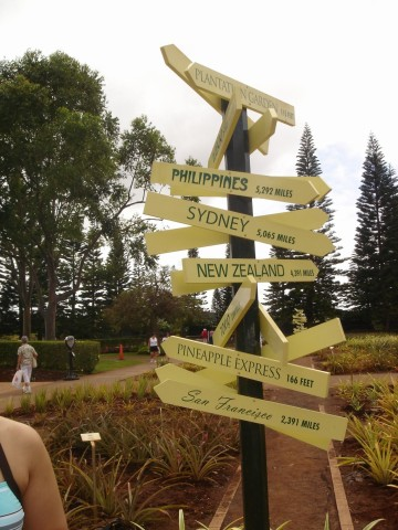 Dole Plantation - which way?