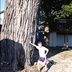 besides holding up this huge tree, Kinder