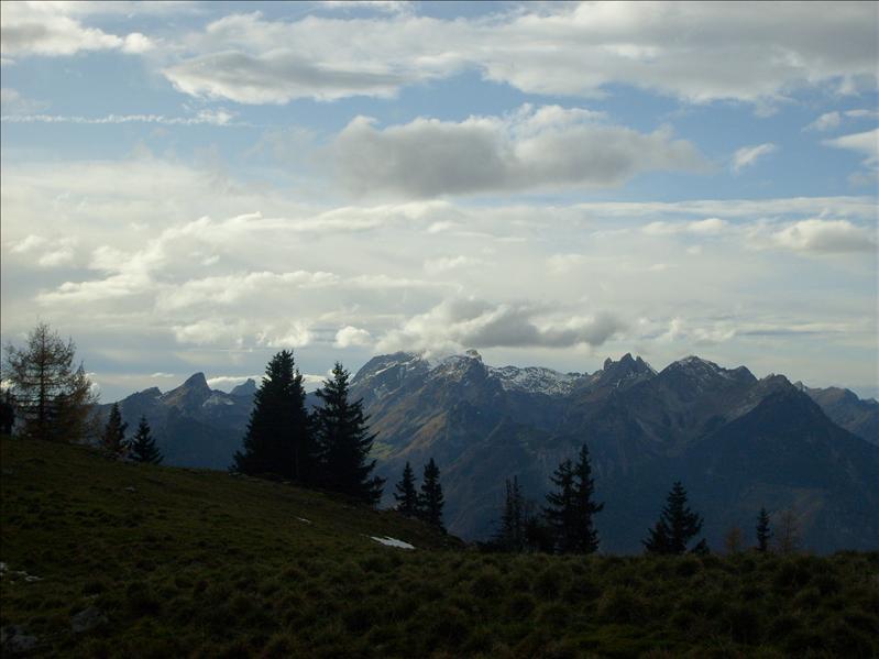 Berneuse•2008
