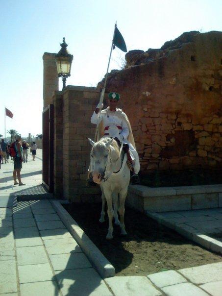 Garde à cheval du mausolé (mais.. s'il veut, il part le cheval!)