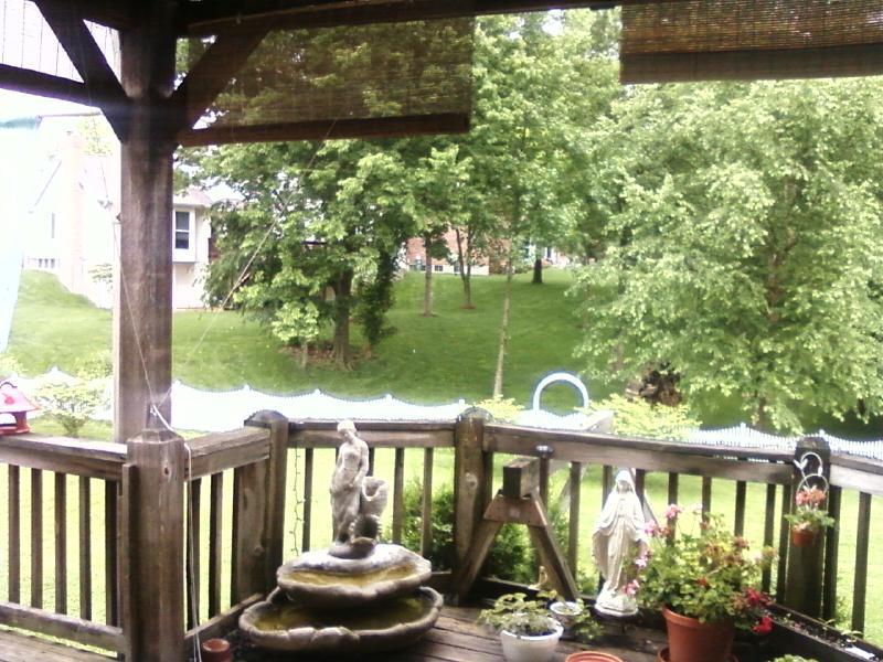 my deck view looking east