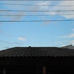 DSC_1566.JPG