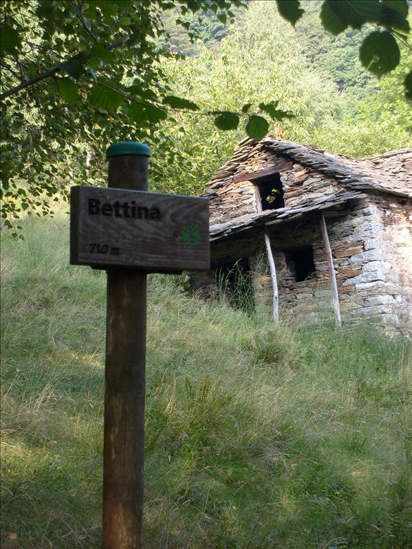 Alpe Bettina•Piemonte•2009