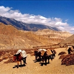 Way to Dolpa