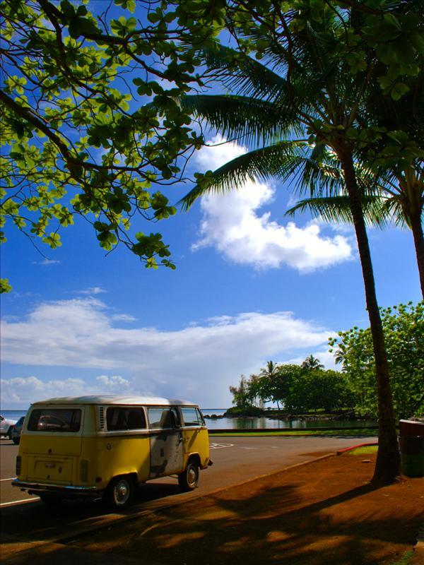 Hilo - Banyan Drive