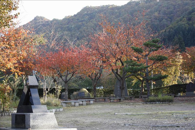 這些紅葉是櫻樹  春天來時  應更美麗