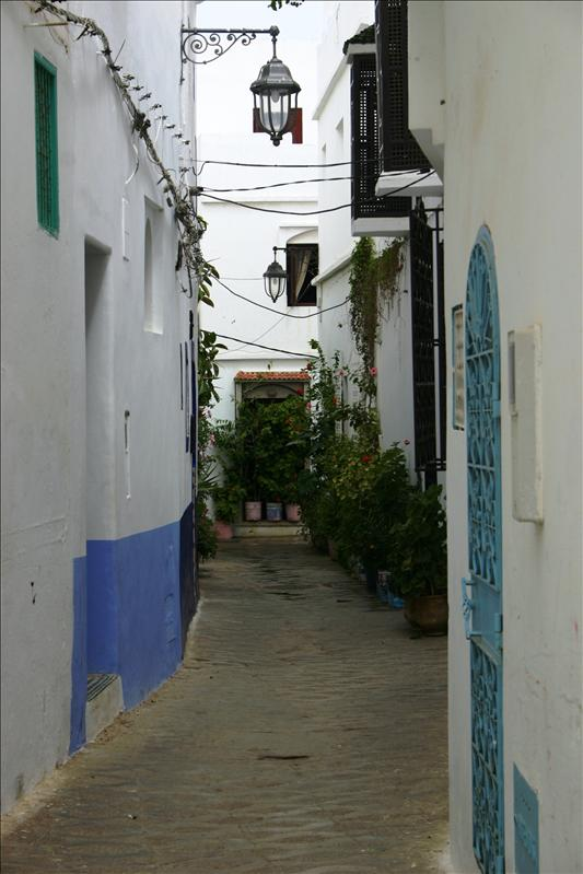 Medina alleyways by day