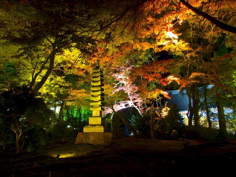 Hogonin Temple