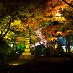 23 Nov '08 - Arashi-yama (Kyoto)