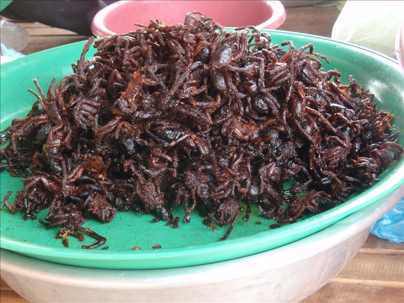Deep-fried spiders!