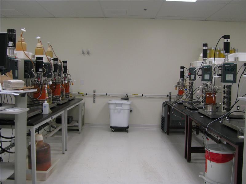 het lab, dit zijn nou fermentors, hier groeien we de gisten in..