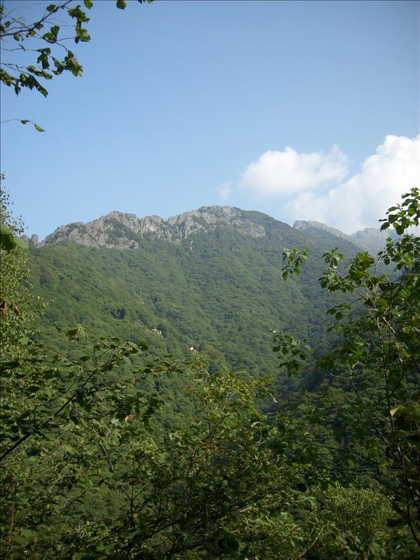 Monte Spigo?•Val Grande•2009