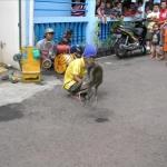 Topeng monyet--A neigborhood mongkey show