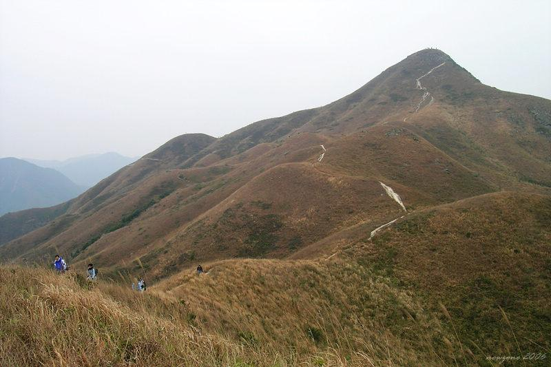 Looking back to Sharp Peak from Mei Fan Teng回望蚺蛇尖