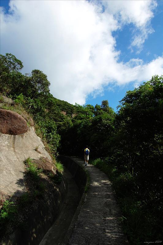 紫羅蘭山徑 Tsz Lo Lan Shan (Violet Hill) Path