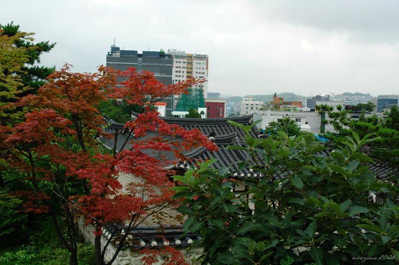 南山韓屋村Namsangol Hanok Village
