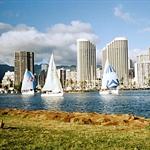 Honolulu Sailboats.jpg