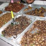 Chiang Rai, Thailand - Dec 2008