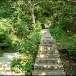 獅子山上村遺址 Lion Rock Upper Village