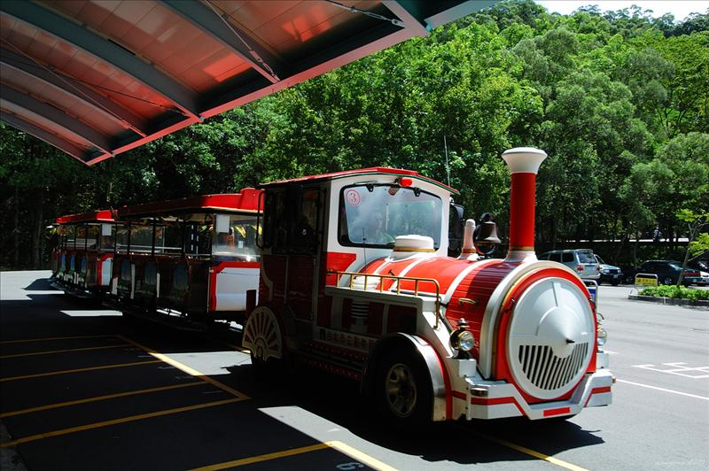 於列車總站搭程遊客列車至鳥園車站 take the shuttle train to Bird World Station
