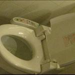 fantastic toilet seat 1.jpg