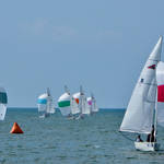 St Petersburg FL Races and Harbor 4-19-21-12 064.jpg