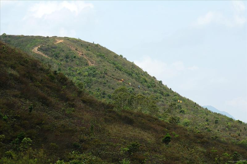 遠處有人從大枕蓋與田尾山之間的山徑下降