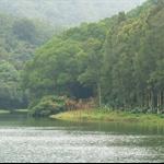 流水響水塘 Lau Shui Heung Reservoir