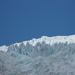 franz joseph glacier (105).JPG