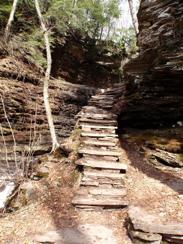 Cool steps made from rocks