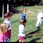 Las 4 con caballo