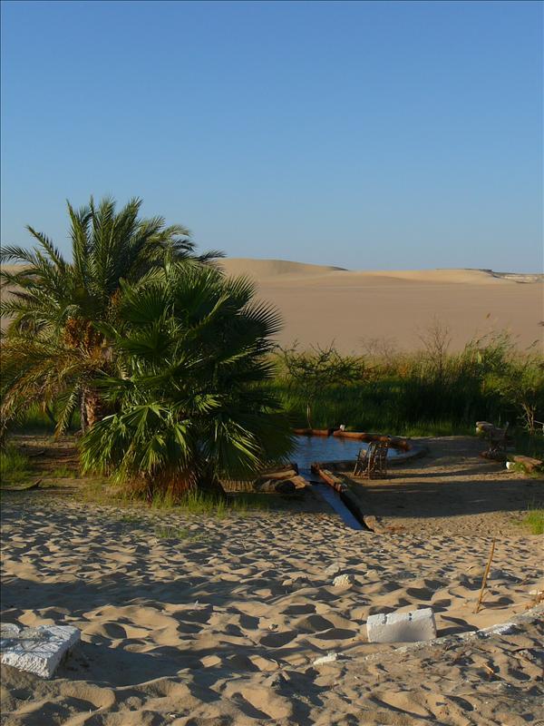 "Siwa - Woestijn ""Hot Spring"""