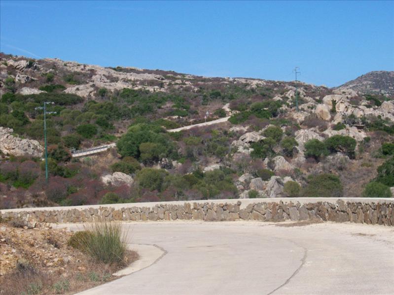 Asinara Panorama