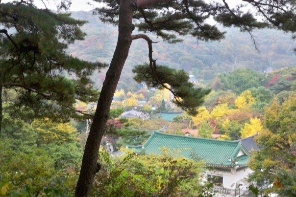 10/22 - namhansanseong park -