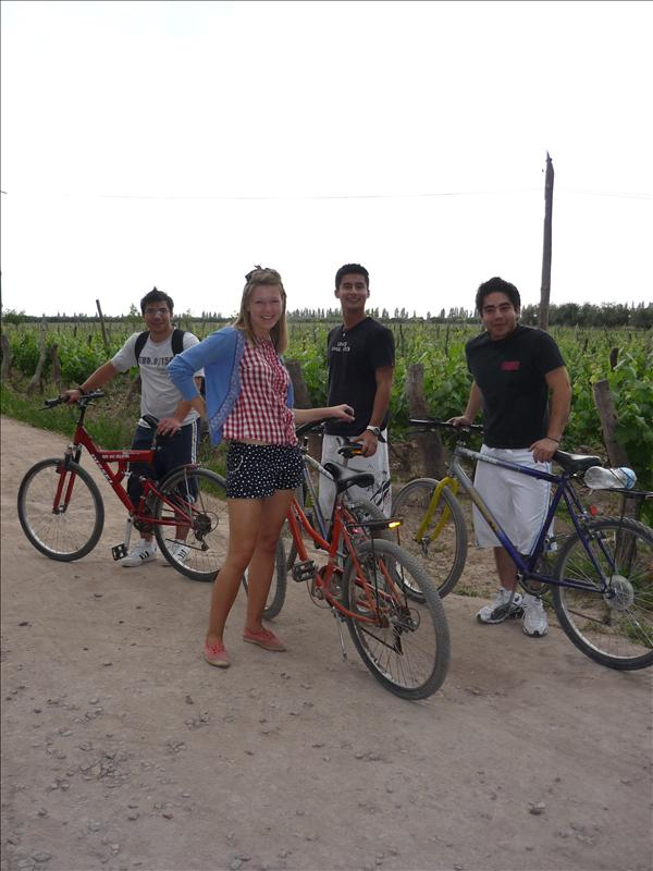 Vineyards on Bikes