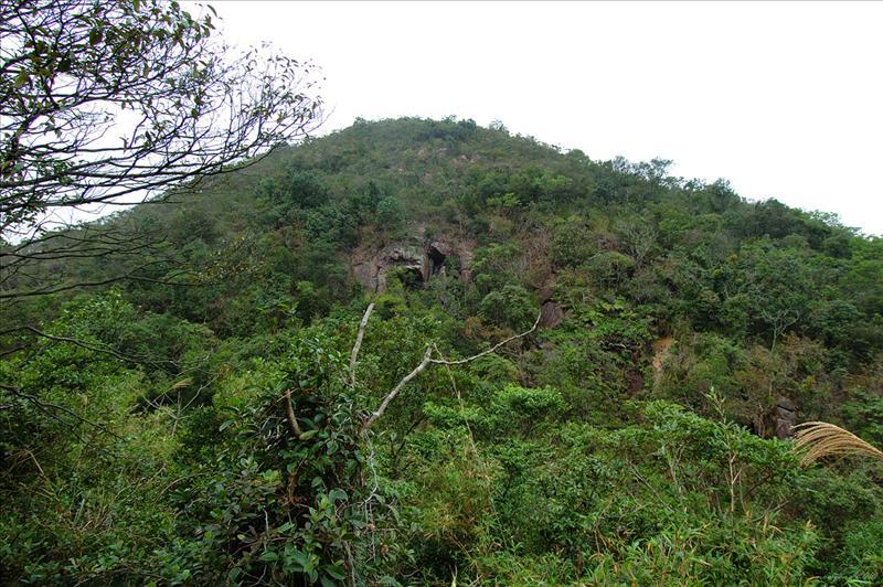 山徑右邊有高聳的崖壁