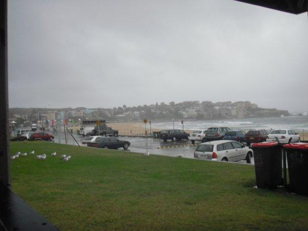 Xmas day at Bondi....hmmmm.....not what I signed up to!