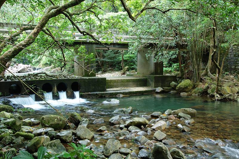 Tai Shing Stream 大城石澗一景