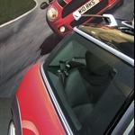 ArielleBesh-Coupes.jpg