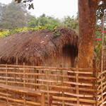 Assam-Haus auf dem Land