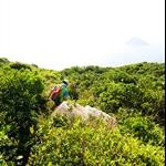 餓死雞橫山徑 Trail circling Ngoh Sei Gai