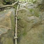第四條攀岩路2 (1).JPG