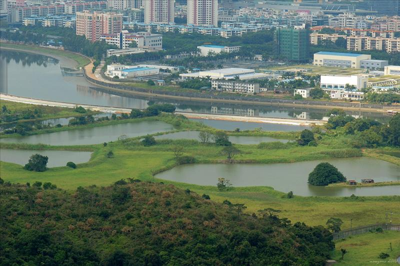 俯覽深圳河兩岸景色