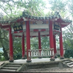 棲蘭森林步道 (10).JPG