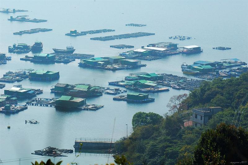 深灣仔漁排 Sum Wan Tsai