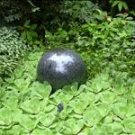 botanical garden visit 10-06 016.jpg