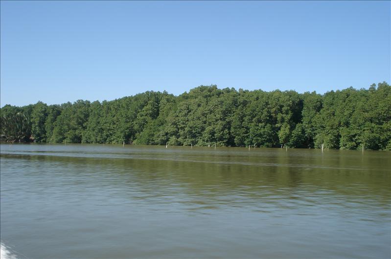view of river, timburong to bandar