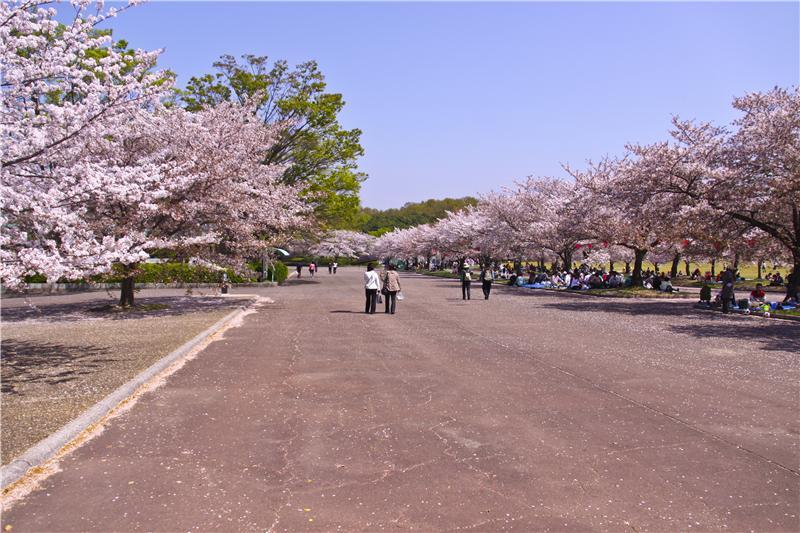 Banpaku Park, Suita