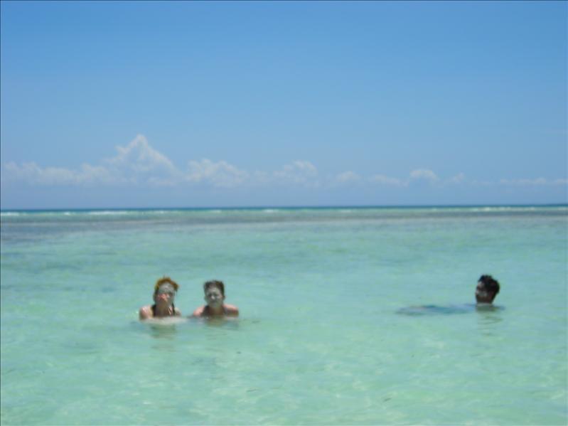 random•Zanzibar